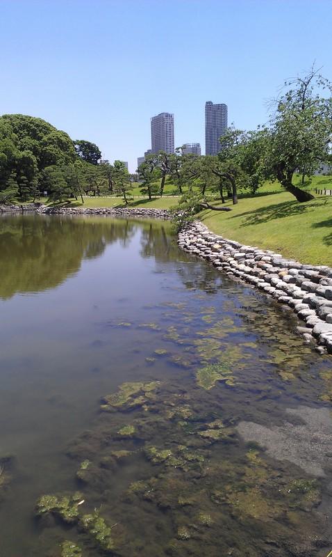 Walking around in Tokyo's Parks